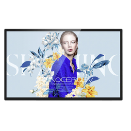 Braun DigiFrame 320 Business Line 81,28cm (32,0 )