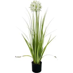 Kunstblume Allium, I.GE.A., Höhe 68 cm, im Topf lila
