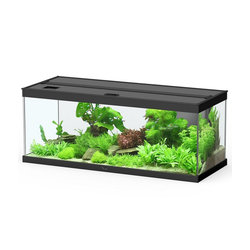 Dehner Aquarien-Set Aqua Premium Pro 100, 160 l, 100 x 40 x 40 cm