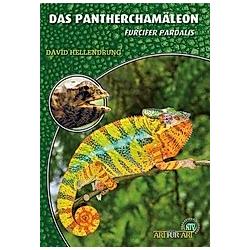 Das Pantherchamäleon. David Hellendrung  - Buch