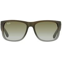 55mm brown / green gradient