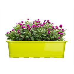 BigDean Blumenkasten für den Balkon − 2x Balkonkasten 60 cm Lime mit Untersetzer (2 Stück) 60 cm