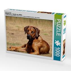Ridgebacks - Hunde aus Afrika Lege-Größe 64 x 48 cm Foto-Puzzle Bild von Birgit Bodsch Puzzle