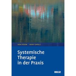 Systemische Therapie in der Praxis: eBook von