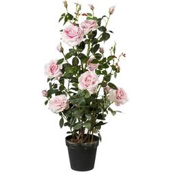 Künstliche Zimmerpflanze (1 Stück), Kunstpflanzen, 26077633-0 rosa H: 112 cm rosa