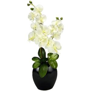 Kunstblume Schmetterling Orchidee mit Blätter in Keramikvase Künstliche Blume Kunstorchidee Phalaenopsis Cymbidium Übertopf Kunstpflanze Hochzeit Seidenblume Blüte Dekoblume Deko Orchideenblüte Rispe