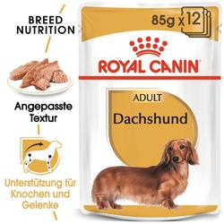 ROYAL CANIN Dachshund Adult Hundefutter nass für Dackel 12 x 85 g