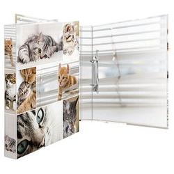 HERMA Animals Katzen Ringbuch 4-Ringe Motiv 3,5 cm DIN A4
