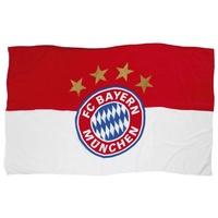 FC Bayern Fahne Logo