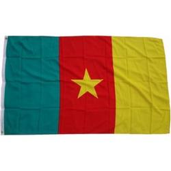 XXL Flagge Kamerun 250 x 150 cm Fahne mit 3 Ösen 100g/m² Stoffgewicht