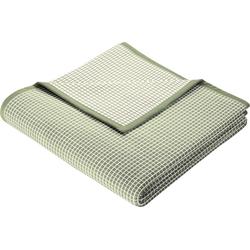 Wohndecke New Cotton, BIEDERLACK, leichte Webdecke grün