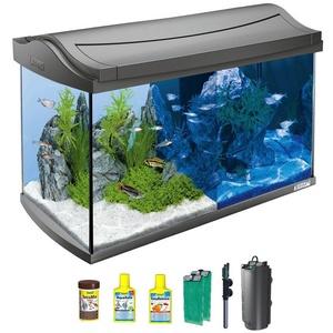 Tetra Aquarium AquaArt LED Discovery Line, BxTxH: 61,5x34x43,5 cm, 60 l