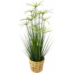 Kunstpflanze Zyperngras in Wasserhyazinthentopf Zyperngras, Höhe 90 cm
