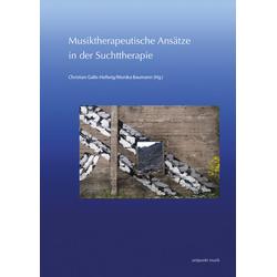 Musiktherapeutische Ansätze in der Suchttherapie: Buch von