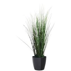 PAPERFLOW Kunstgras Gras 55,0 cm Höhe