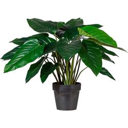 Kunstpflanze Kunstpflanze, Creativ green, Höhe 65 cm