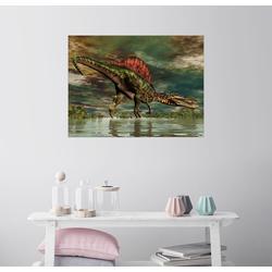 Posterlounge Wandbild, Spinosaurus aus der Kreidezeit 80 cm x 60 cm
