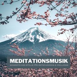 Meditationsmusik als Hörbuch Download von Emmanuel Durand