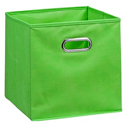 Zeller Aufbewahrungsbox 30,0 l grün 32,0 x 32,0 x 32,0 cm