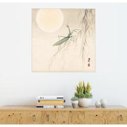Posterlounge Wandbild, Gottesanbeterin auf einem Weiden Zweig 70 cm x 70 cm