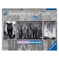 Ravensburger Puzzle Panter Elefanten Löwe 1000 Teile, Puzzleteile