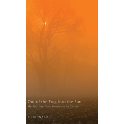 Out of the Fog Into the Sun als Buch von Jo Kinnard