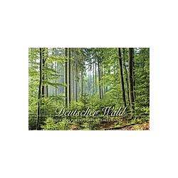 Deutscher Wald 2021