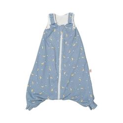 Ergobaby Babyschlafsack Babyschlafsack On The Move Sleep Bag (6-18 M) TOG blau 86/98