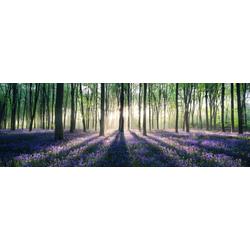 Bild ENCHANTED FOREST(BH 156x52 cm)