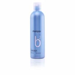 B2 silver shampoo 250 ml
