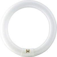 Philips Master TL-E Circular Super 80 40W/830 G10q