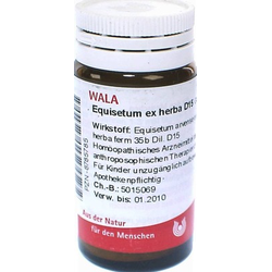 EQUISETUM EX Herba D 15 Globuli
