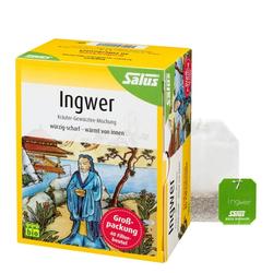 INGWER KRÄUTER-GEWÜRZTEE-Mischung Bio Salus Fbtl. 40 St