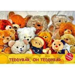 TEDDYBÄR OH TEDDYBÄR... (Wandkalender 2020 DIN A2 quer)