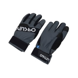 Oakley - Factory Winter Glove - Skihandschuhe - Größe: M