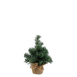 Tannenbaum, 25 cm