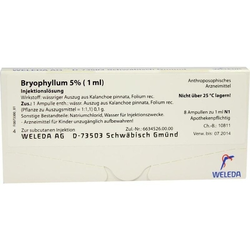 Bryophyllum 5% (1ml)
