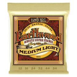 Ernie Ball 2003 Earthwood 80/20 Medium Light