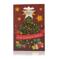 OwnGrown Blumenerde Mein Weihnachtsbaum 2028 - Premiumsamen für 5 x Nordmanntanne Weihnachtsbaum - Tannenbaum für Garten 5 Samen