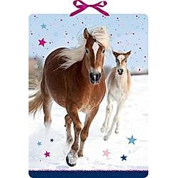 Pferdefreunde im Schnee  Wand-Adventskalender