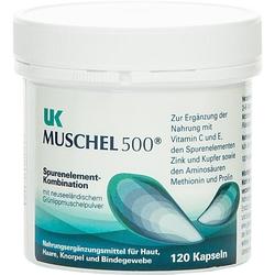 UK Muschel 500