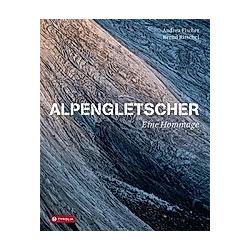 Alpengletscher - eine Hommage. Andrea Fischer  - Buch