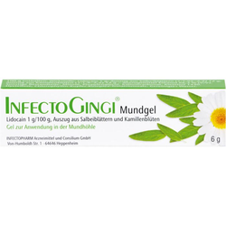 INFECTOGINGI Mundgel 6 g