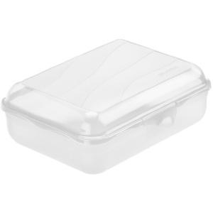 Rotho FUN Funbox, 1,25 Liter Brot-Box, Aufbewahrungsbox / Brotdose aus Kunststoff, Farbe: transparent