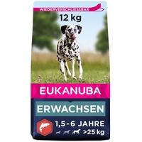 Eukanuba Adult mit Lachs & Gerste für große Rassen - Trockenfutter für ausgewachsene Hunde, 12 kg