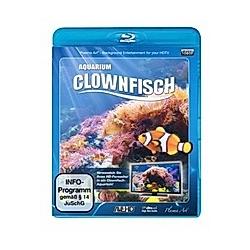 Aquarium Clownfisch - DVD  Filme