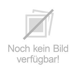 Rasierpinselz-Halter silber Golddachs 1 St