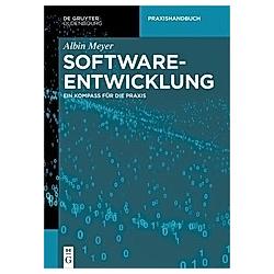 Softwareentwicklung. Albin Meyer  - Buch
