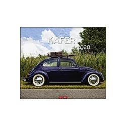 Käfer 2020