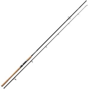 Daiwa R`nessa Spinning 2,70m 50-90g Angelrute